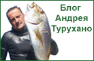 Блог Андрея Турухано