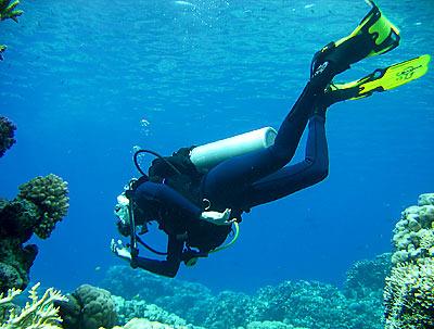 Жилет-компенсатор Aqua Lung - SeaQuest Diva LX, съемка под  водой