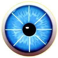 Рис.1 - 8 радиальных надрезов на роговице глаза