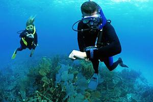 Дайвинг. Неконтролируемое всплытие, подводные навигационные приборы, кашель под водой.