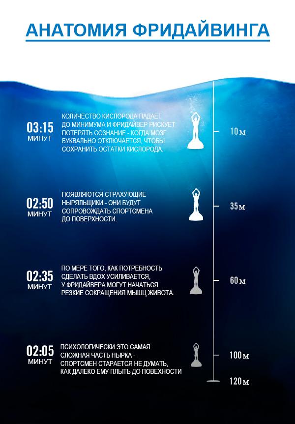 Инфографика: анатомия фридайвинга