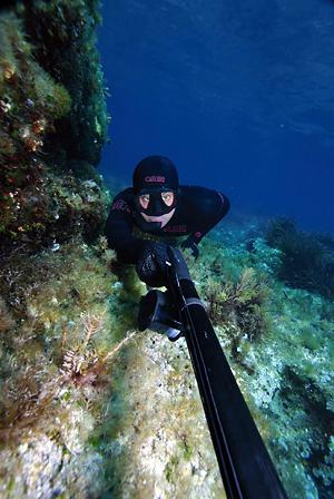 Правила регистрации рекордов в морской подводной охоте