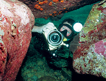 Подводная фотография. Фотоновости уходящего 2008 года.