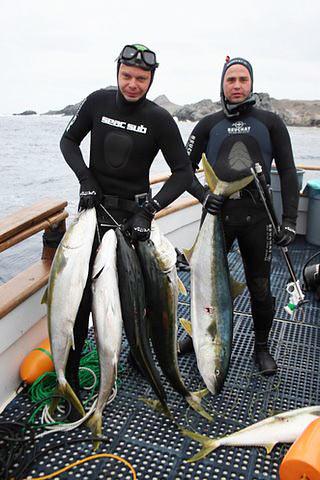 Подводная охота трофейная охота