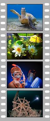 Поздравляем победителей 3-го этапа нашего фотоконкурса!