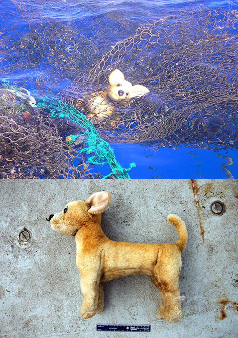 Океанский мусорный водоворот
