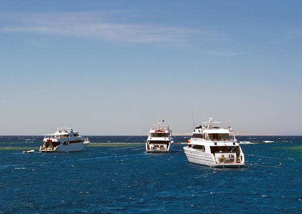 Официальное заявление Министерства туризма Египта