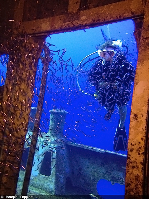 Айфон вместо подводного фотоаппарата?