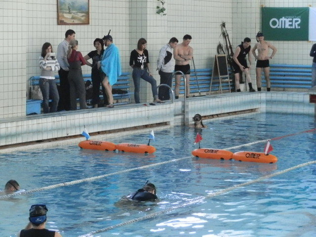Клуб ОренДАЙВ приглашает всех желающих принять участие в Турнире подводных стрелков